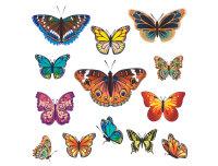 Wenko® Fensterbild Schmetterlinge, 13-teilig